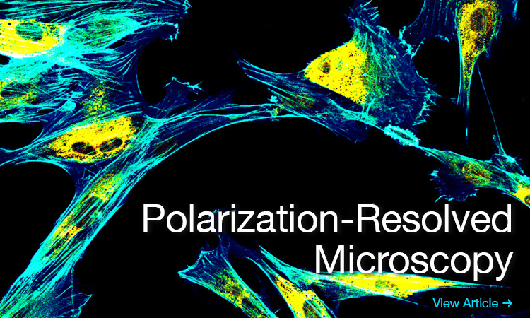 Polarization-Resolved Microscopy in the Life Sciences