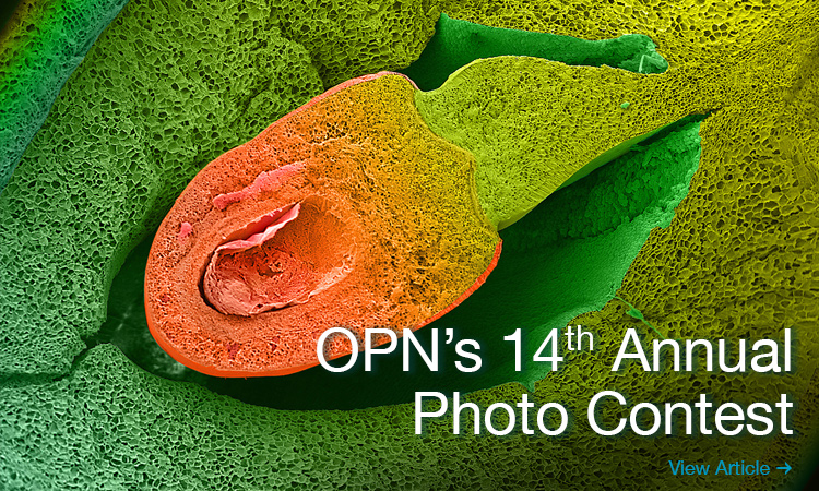 OPN 2019 Photo Contest
