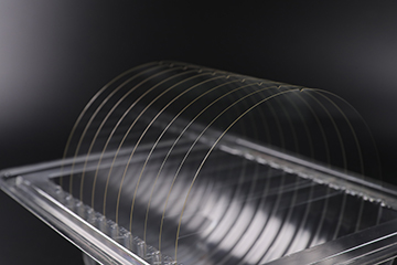 Glass wafers in holder image