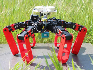 AntBot Navigates Without GPS