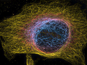 Superresolution in Space and Time