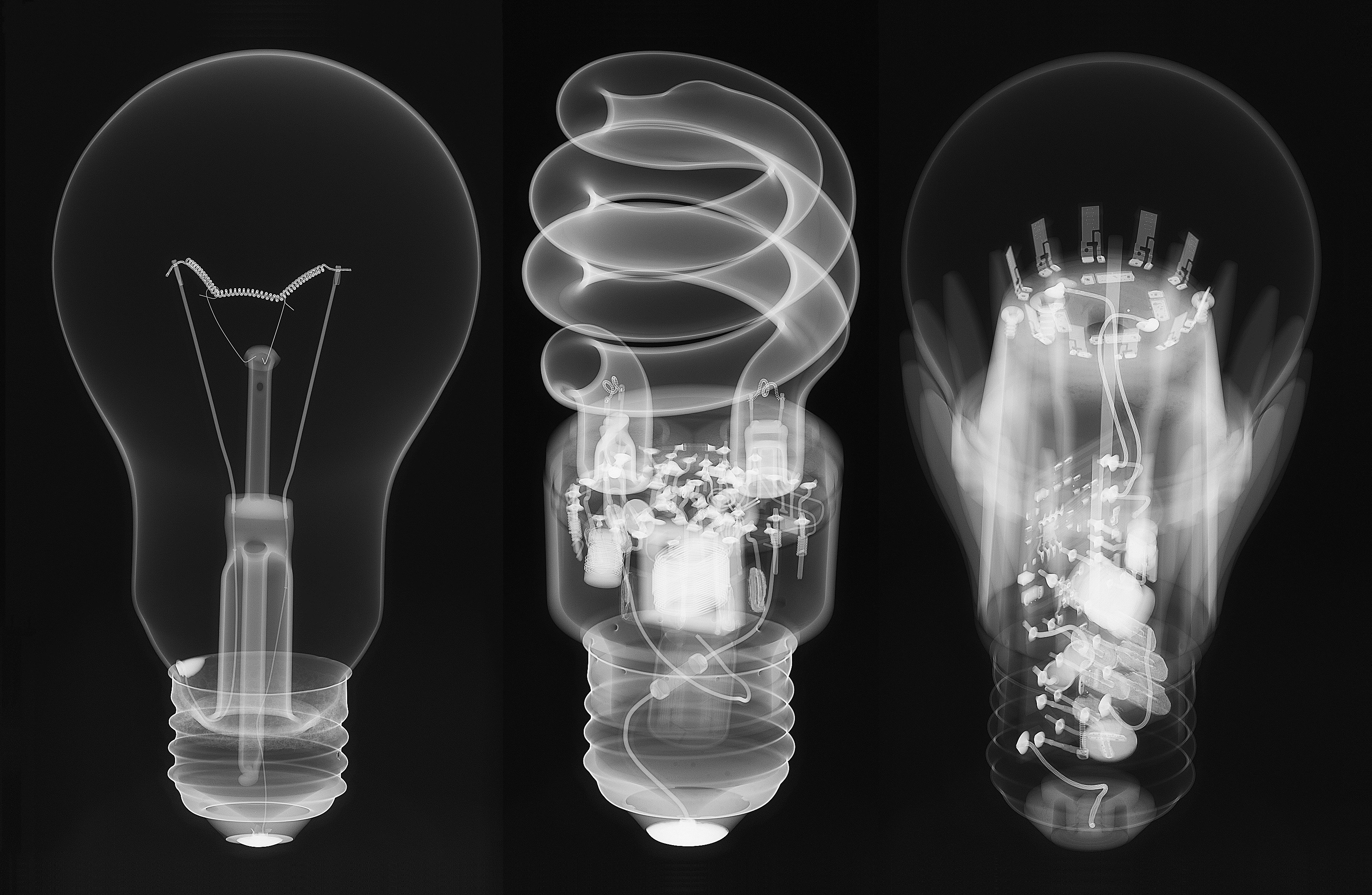 The Evolution Of Electric Light Bulbs: An X-Ray View